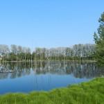 Il Lago dei Gelsi