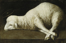 Francisco Zurbaràn, Agnus Dei, 1635-40, The San Diego Museum of Art