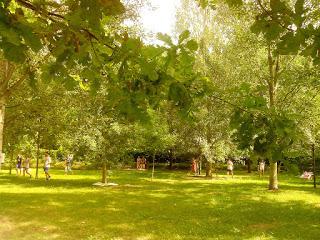 5-Ecoismi-Parco-Isola-Borromeo