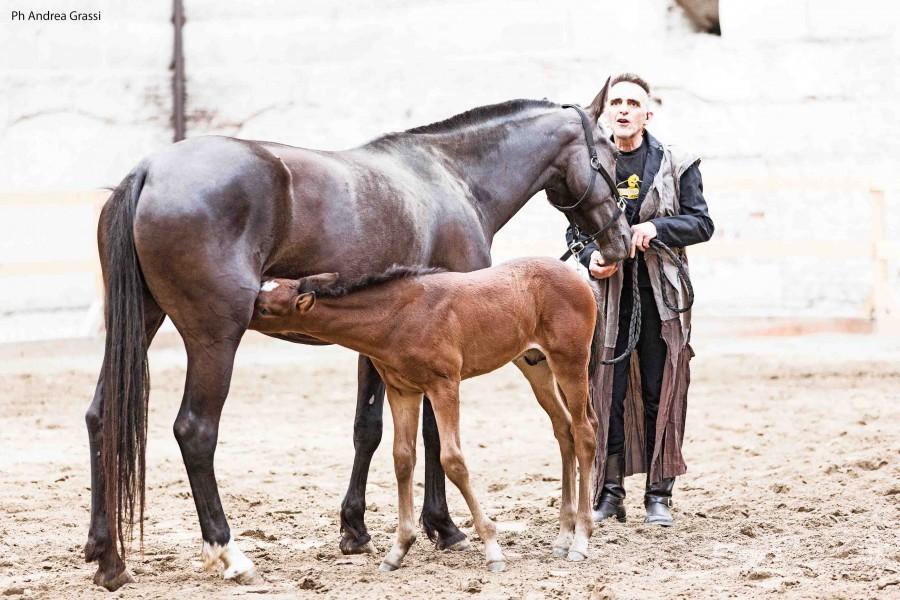 Giovanni LInfo Ferretti insieme al cavallo Verbena, foto di Andrea Grassi