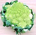 120px-Romanesco_Broccoli