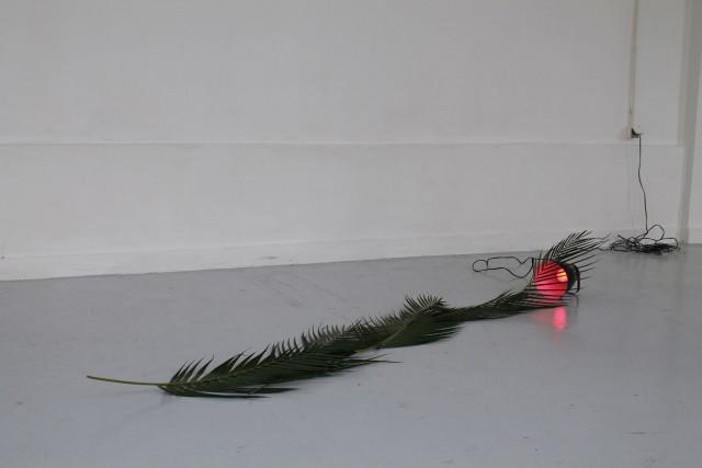 PaulLahana_CeliaGondol_Décalage vers le rouge_ 2014_ feuille de plante, lampe et ampoule led