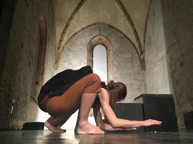 Anatomia, Compagnia Simona Bertozzi-Nexus - foto Nexus (3)